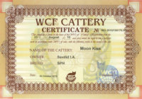 WCF Cattery Certificate